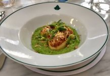 Atlantic sea scallops - pea purée with broad beans, lemon zest, sea cress and crispy shallots