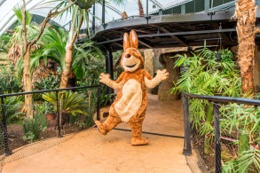 easter_bunny_in_tropical_house_-_credit_jason_brown__(1)